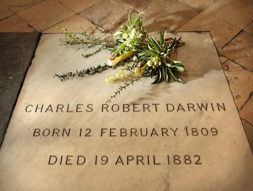 nagrobna plošča Charlesa Darwina