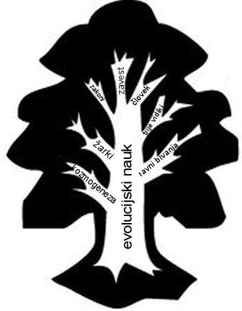 drevo področij ezoterične filozofije